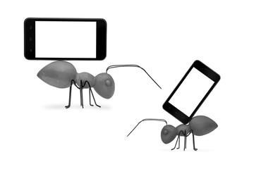2 Betonameisen mit einem Smartphone Textfreiraum als Freisteller