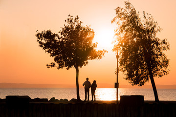 Romantic couple idea of evening walk near water, silhouettes of couple in love standing between two trees and admiring sunset landscape of setting sun sky above the sea horizon