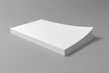 Mock up 3D illustration book template.