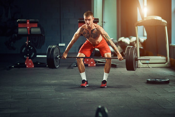 Athletic man works out at the gym with a barbell
