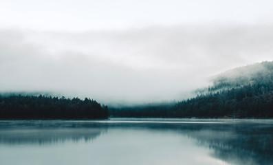 foggy lake in norway - 232486670