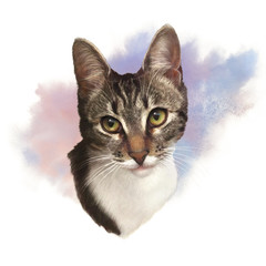 Cute cat on watercolor background. Portrait of a cat striped head with yellow eyes. Good for print T-shirt, card, pillow. Hand painted pet illustration. Watercolor animal collection. Design template