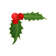 Holly with red berries and green leaves. Traditional Christmas symbol. Nature and botany theme. Flat vector icon