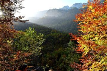 naturaleza, paisaje, verde, roca, cascada, árbol, arroyo, montagna, roca, primavera, hermoso, gemas, chorros, musgo, árbol, caer, ambiente, nativo, madera
