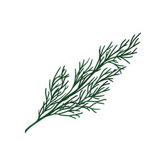 Green twig of Christmas tree. Small coniferous branch. Natural object. Flat vector design