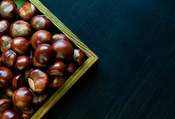 Chestnuts on a dark background.