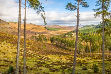 Cairngorms National Park in atumn, Scotland, Great Britain