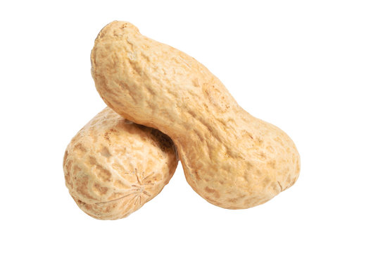 Peanuts close up. Isolated on white background. Full depth of field