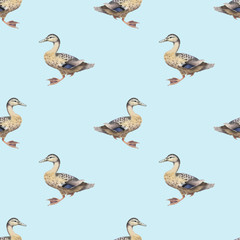 Seamless pattern with watercolor wild ducks
