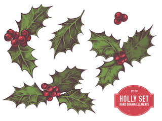 Vector collection of hand drawn holly