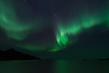 Amazing Aurora Borealis in North Norway (Grotfjord), mountains and sea in the background