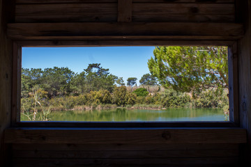 landscape lake with trees and blue sky in National Park Ria Formosa in Algarve, Portugal