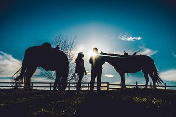 Couple on Farm Silhouette