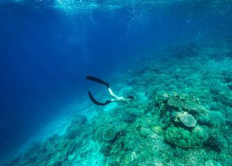Freediving in Indonesia, Komodo, Nusa Tenggara Timur, Indonesia