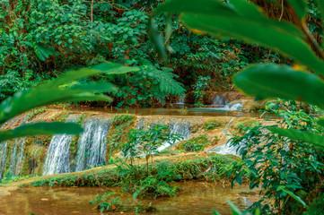 Fototapeta Stream in the jungle