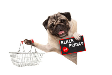 happy smiling pug puppy dog, with wire metal shopping basket and Black Friday Sale sign, behind white banner, isolated