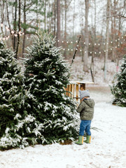 Little boy playing near snow covered Christmas trees