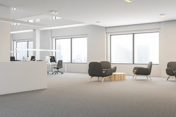 Gray armchair office waiting room, reception