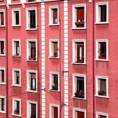 the windows in the facade