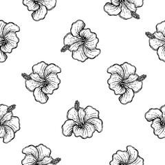 Seamless pattern of hand drawn sketch style flowers isolated on white background. Vector illustration.