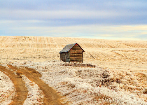 Small grain shed on the prairie