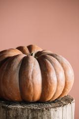 Huge ripe pumpkin on stump