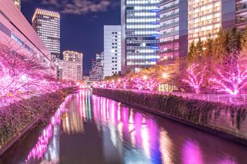 東京都 目黒川みんなのイルミネーション