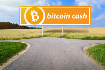 Concept of Bitcoin Cash Hardfork, Between Bitcoin ABC and nChain Developer, Cryptocurrency