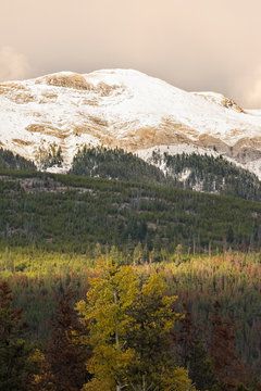 Snowy mountain above autumn forest