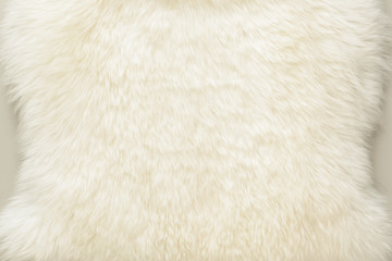 background and textured of real white cream wool sheep