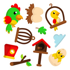 Illustration set of Cute Bird Element with Cartoon Style