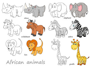 Cartoon african animals outline and colored vector illustration