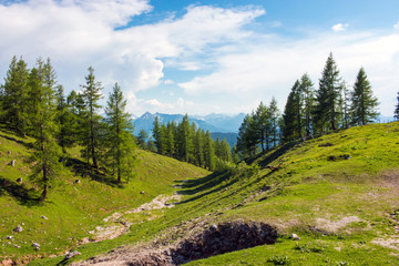 Trekking route in National park Dachstein, Austria. Away alpine mountains and green forest