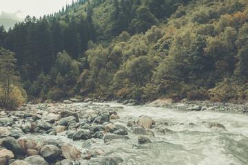 Closeup view river scenes in forest, national park Dombai, Caucasus, Russia,
