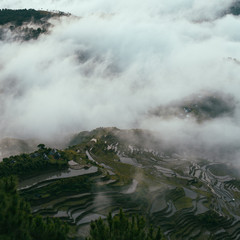 Overhead view of the rice terraces partially covered by clouds.