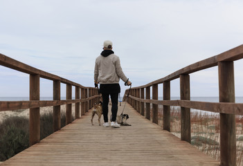 Man with dogs on walkway