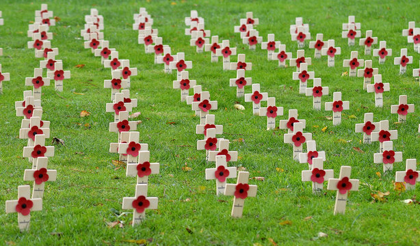 Garden of Remembrance marking centenary of end of World War One