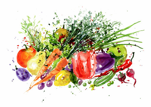 Watercolor art with fresh vegetables. Farmers market watercolor illustration with fresh vegetables.