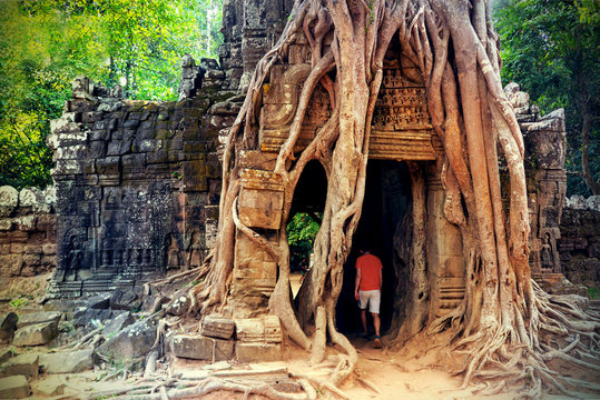 Huge roots of strangler fig tree on lost ancient temple Ta Som Gate in Angkor Wat complex at Siem Reap, Cambodia. Khmer architecture of Angkor Archaeological Park. UNESCO World Heritage site.