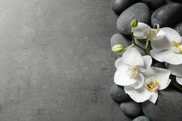 Flat lay composition with spa stones and orchid flowers on grey background. Space for text Wall mural