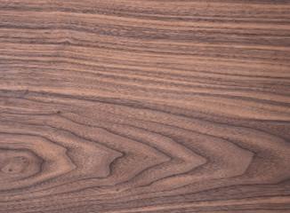 Wood texture of natural american black walnut tangential cut