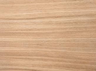 Wood texture of natural oak radial veneer