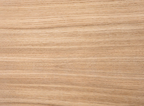 Wood texture of natural oak radial veneer