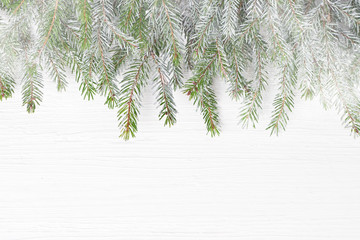 Christmas fir tree branches with snow on white wooden background. Copy space, top view