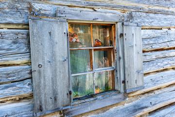 Fenster aus Holz eines alten Gebäudes aus Holz