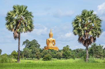 back of big golden buddha statue sitting at thai temple with rice field