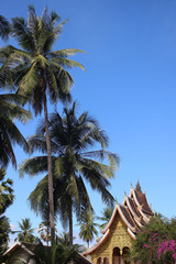 "View of the Royal Palace ""Haw Kham"" in Luang Prabang, Laos, with tall palm trees and a blue sky background."