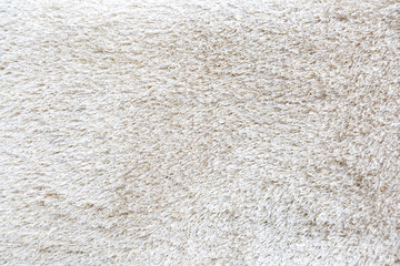 Fluffy carpet with texture.