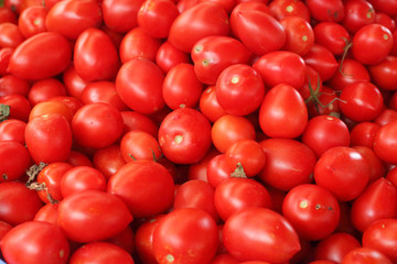 Tomatoes in the market
