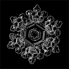 Snowflake isolated on black background. This illustration based on macro photo of real snow crystal: small star plate with six short, broad arms, glossy surface and complex inner structure.